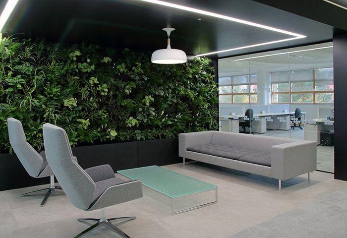 Phong cách Eco kết hợp thảm lót sàn văn phòng cho không gian tươi mát